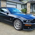 2008 Ford Mustang Shelby Cobra Gt500 2008 Ford Mustang Shelby Cobra Gt500 2018 2019 Mycarboard Com