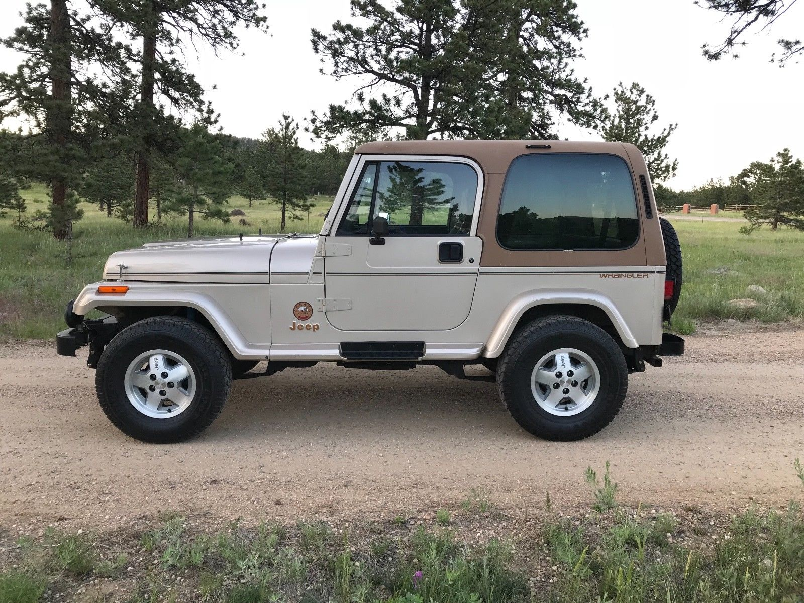 hight resolution of jeep wrangler yj awesome 1993 jeep wrangler sahara 1993 jeep wrangler yj sahara 63k