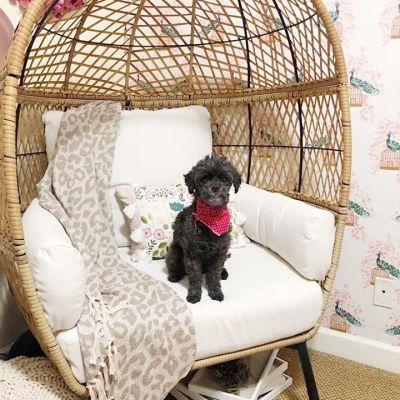 EGG chair vibes!