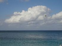 Jennifer Avventura 2012 Cayman (10)