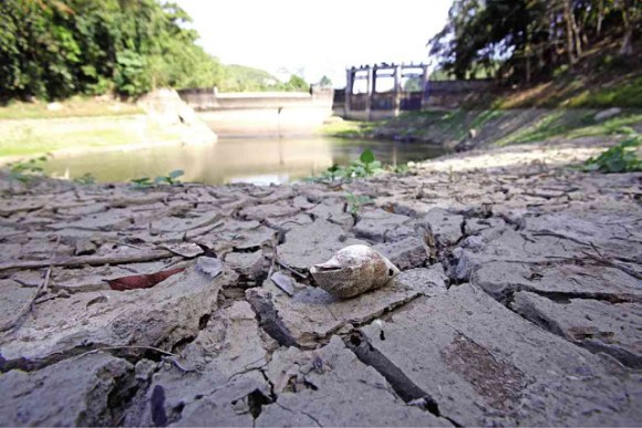 DRY SPELL. Cebu Province has declared a state of calamity due to the drought but it can't release financial aid due to Comelec restrictions. (Photo from thebigwobble.org)