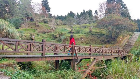 Alishan trail
