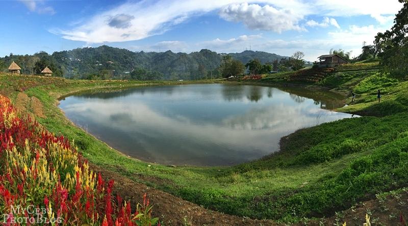 A Return to Tieza Botanical Garden