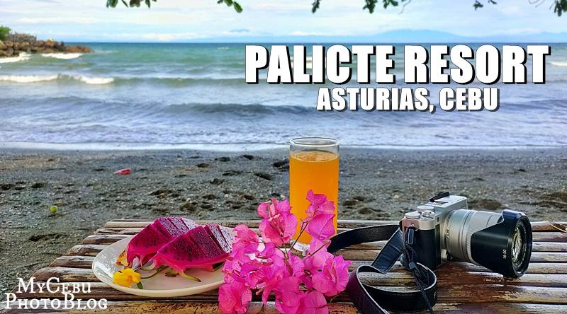 Palicte Beach Resort: Affordable Getaway in Asturias