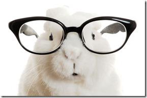 bunny specs