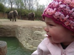 Crying her way through the zoo