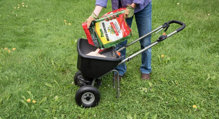 Expert Lawn-care Tips for a Weed-free Yard