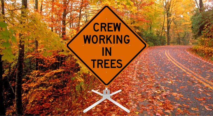 Route 926 (Street Road), Sconnelltown Road Restricted Next Week for Tree Trimming Operations in Chester County