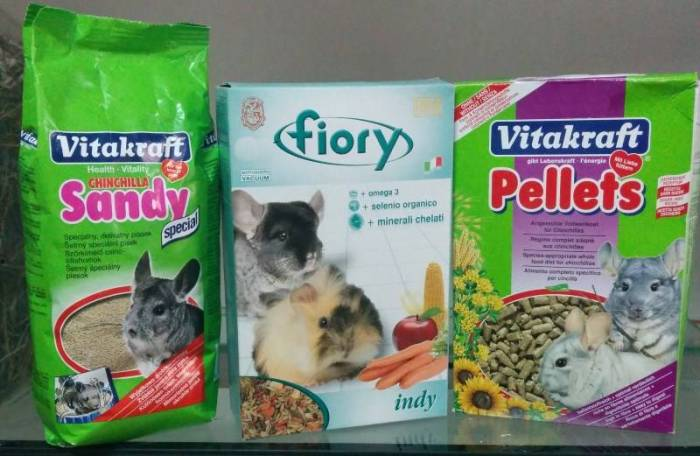 What to feed a chinchilla