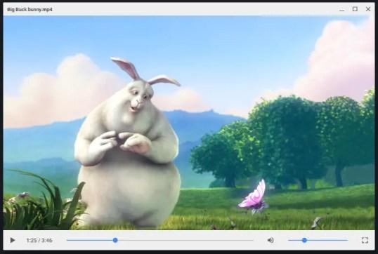 Vidéo Chrome OS