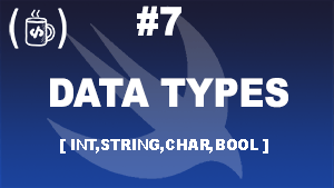 Data Types (int,char,bool) that looks cool.
