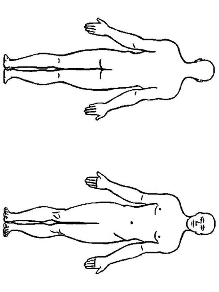 Male Human Body Sketches Sketch Coloring Page