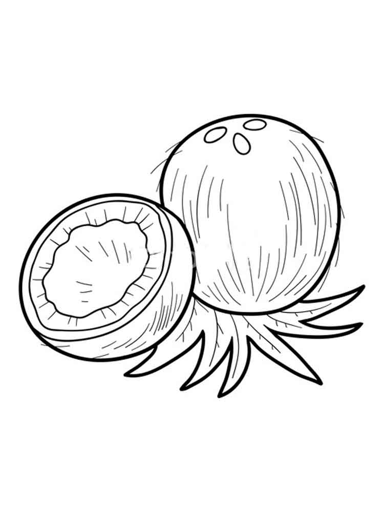Coconut coloring pages. Download and print Coconut