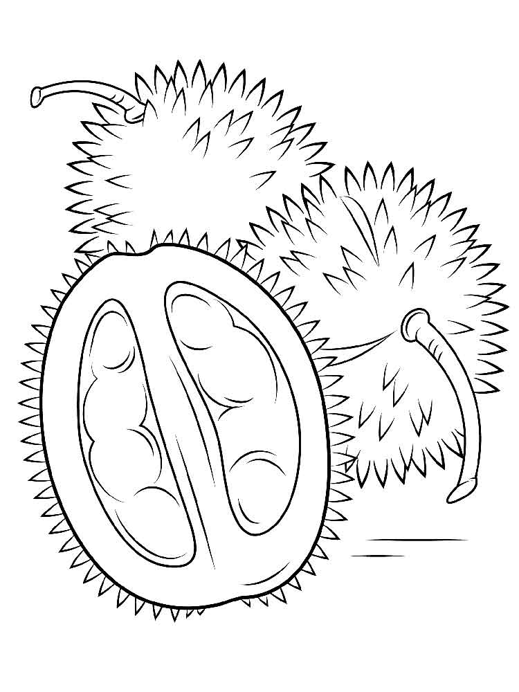 Durian coloring pages. Download and print Durian coloring