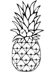 pineapple coloring pages cartoon fruits drawing print fruit template printable sketch recommended getdrawings templates