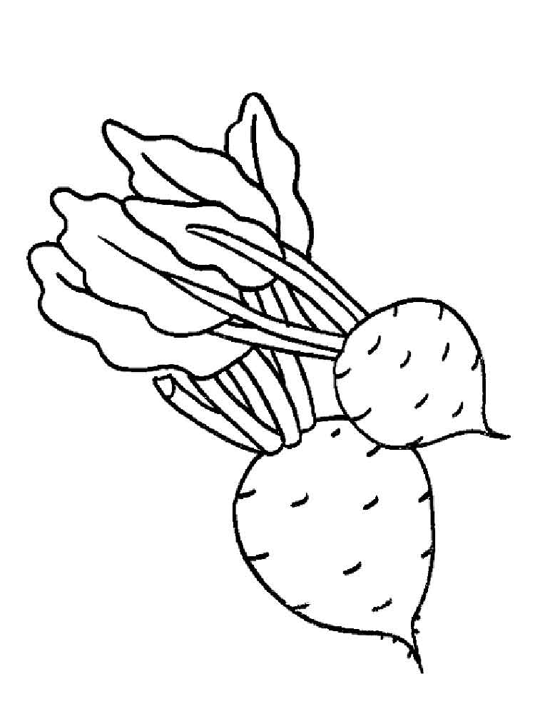 Celery Coloring Pages Download And Print Celery Coloring Pages