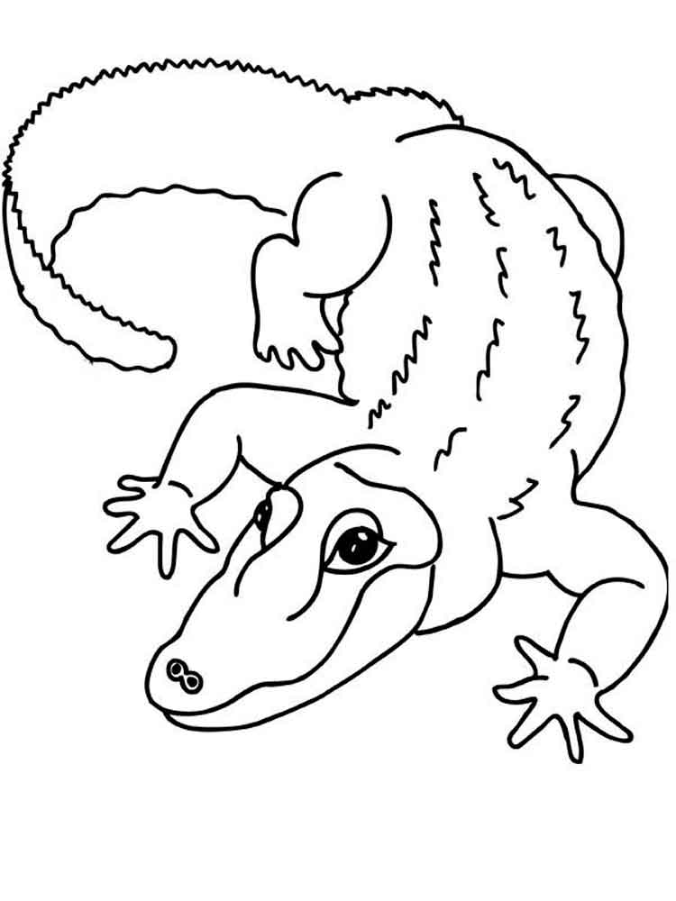 Crocodile coloring pages. Download and print crocodile