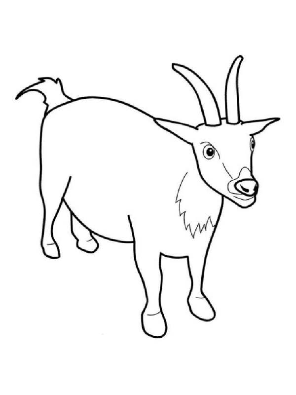 Goat coloring pages Download and print goat coloring pages