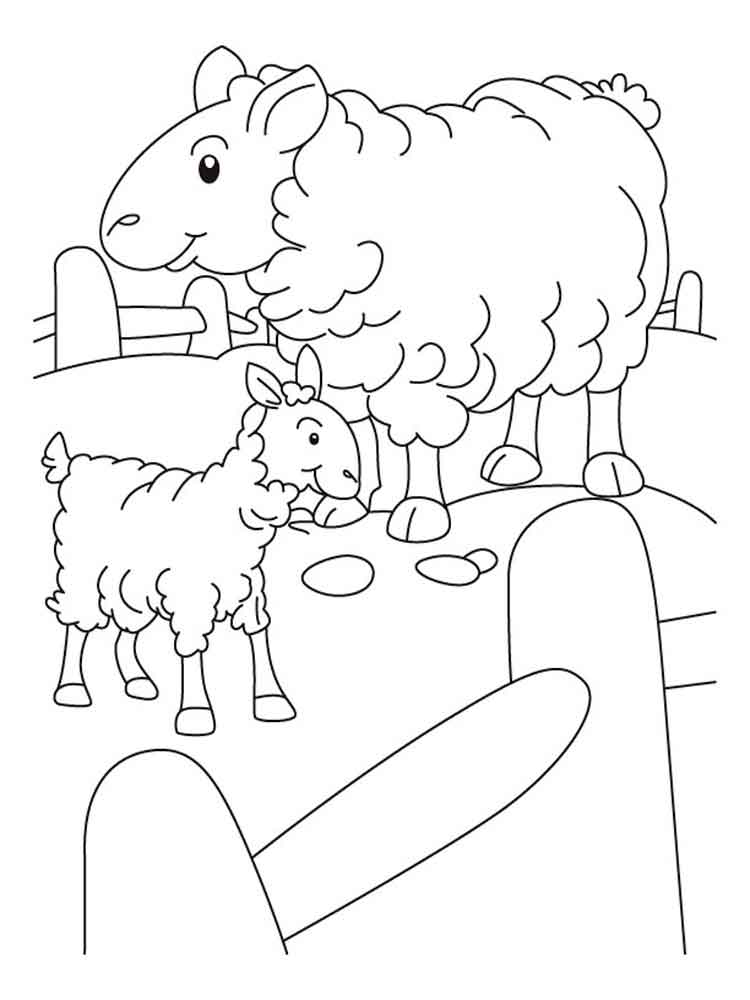 Lamb coloring pages. Download and print lamb coloring pages