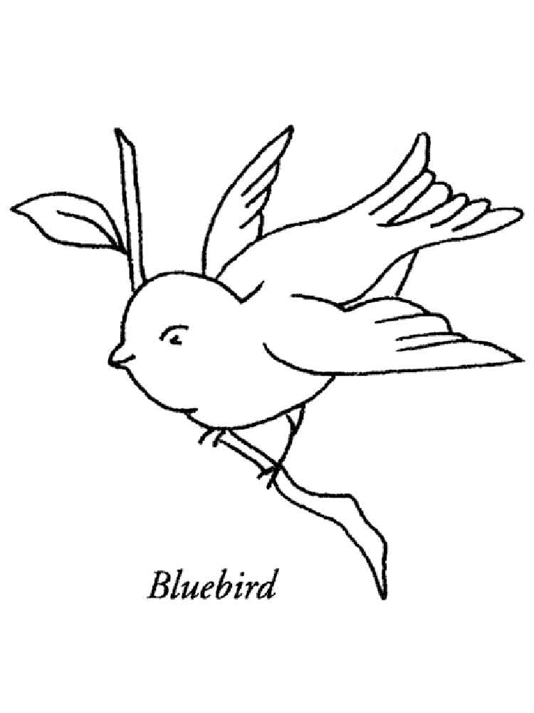 Httpselectrowiring Herokuapp Compostgorgeous Blue Bird To Use In