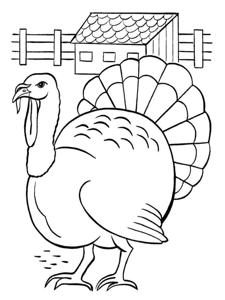 Egrets Coloring Pages Download And Print Egrets Coloring Pages