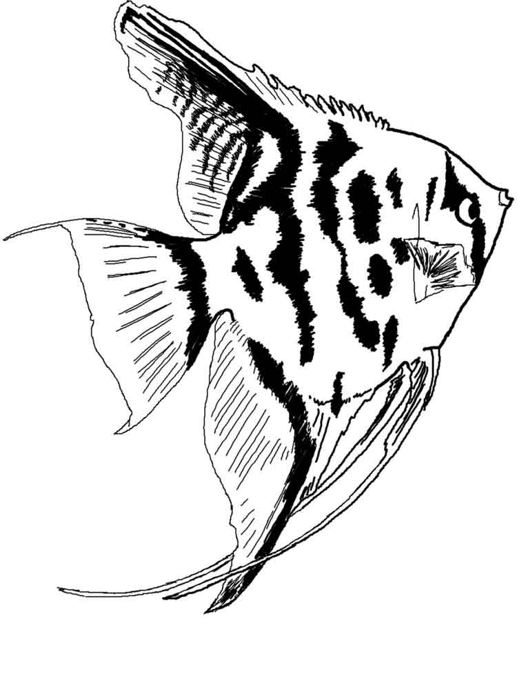 Aquarium Fish coloring pages. Download and print Aquarium