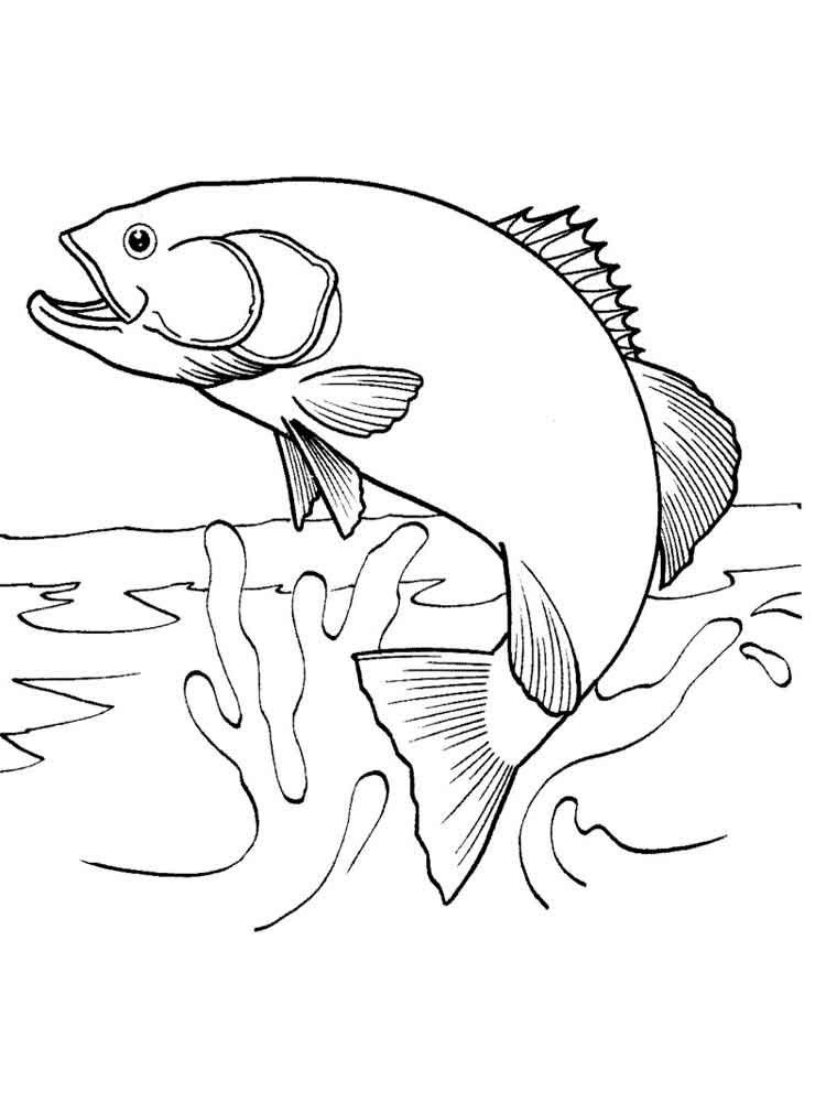 Salmon coloring pages. Download and print Salmon coloring