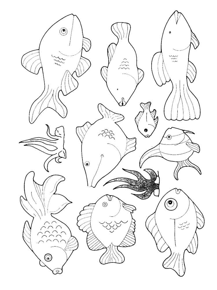 Sea fish coloring pages. Download and print Sea fish
