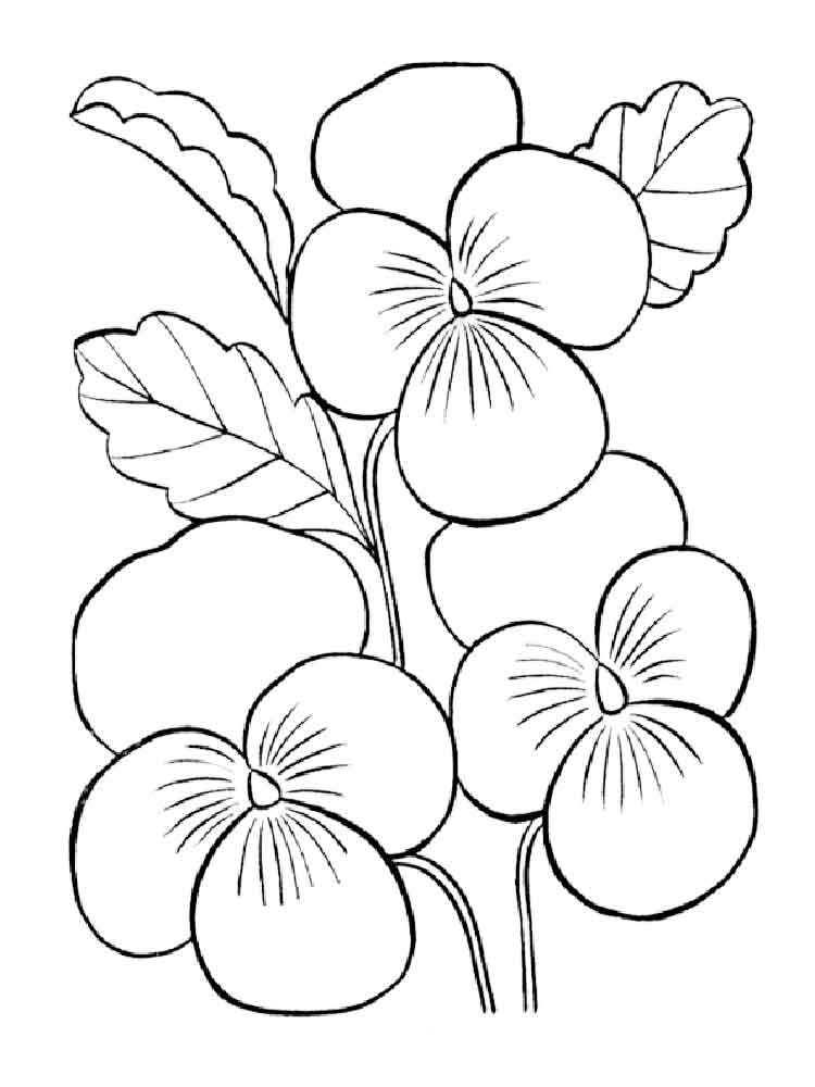 Violet coloring pages. Download and print Violet coloring
