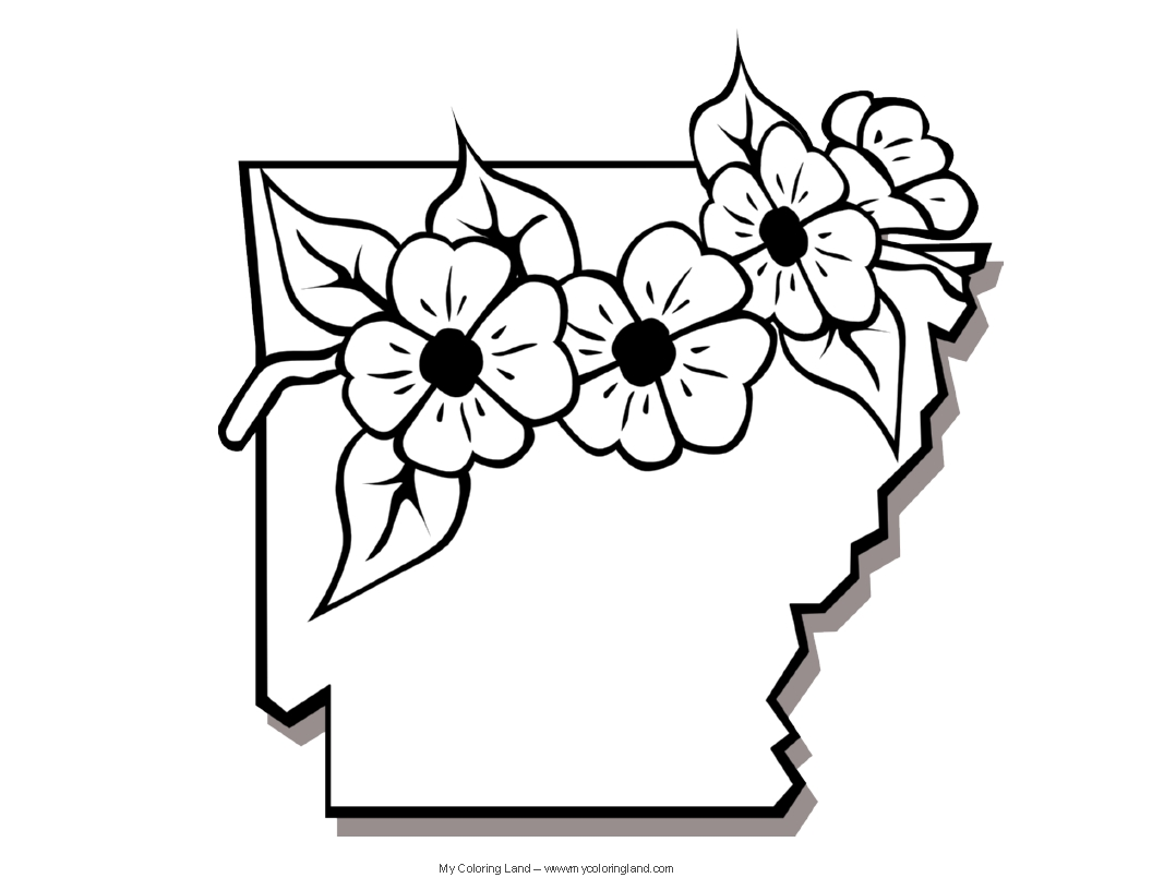 Arkansas State Worksheet