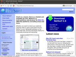 NetSurf Lightweight Web Browser