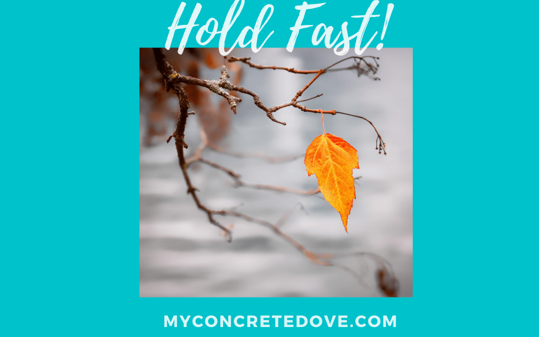 Holding Fast to God's Unfailing Love and Mercy