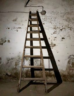 brown wooden ladder Don't Lose Focus of the Most Important Thing