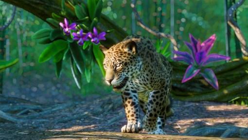 Die Wildnis ruft: Auf in den Dschungel mit dem Südamerika-Paket für Planet Zoo