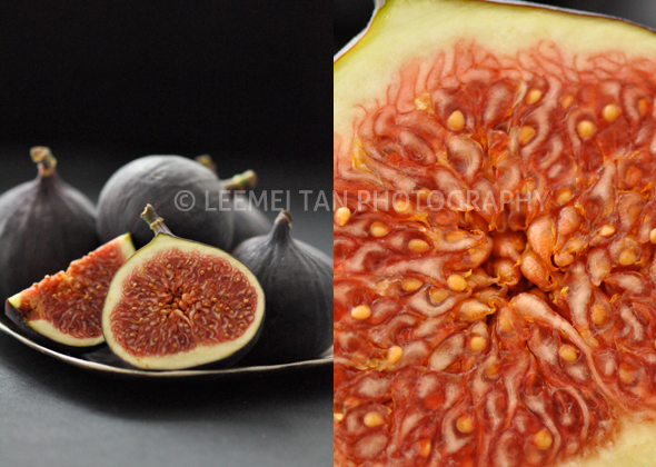 figs_2
