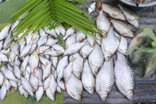 luang-prabang-market-3