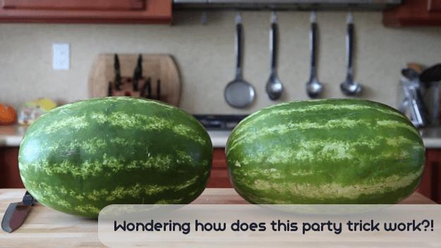 watermelon-01