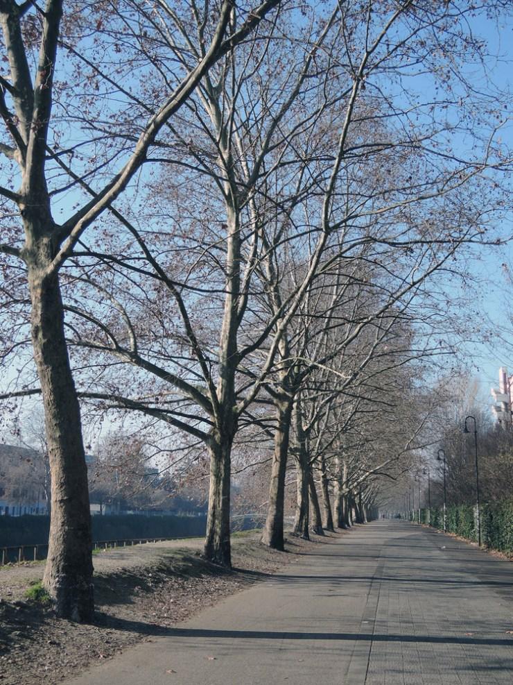 Cyclo-pedestrian path