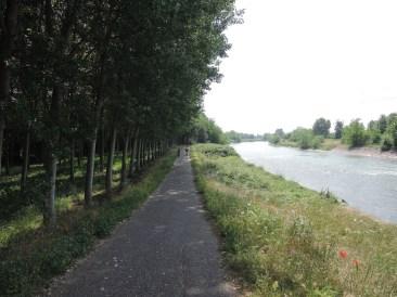 Trees and river, Peschiera Mantova