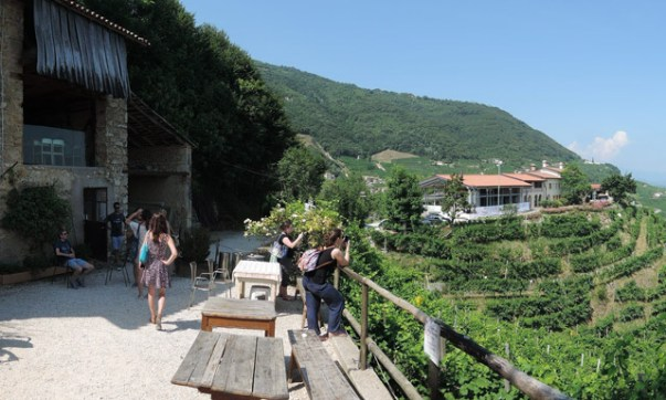 On the Prosecco hills tasting Perlage wines