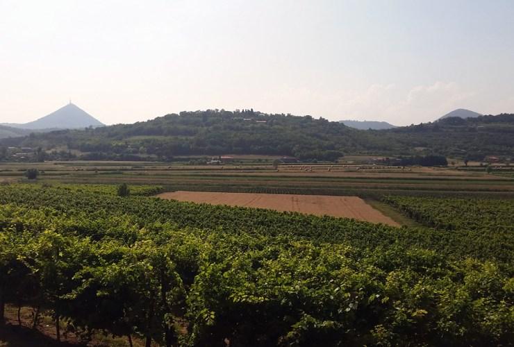 The area surrounding the Lavandeto
