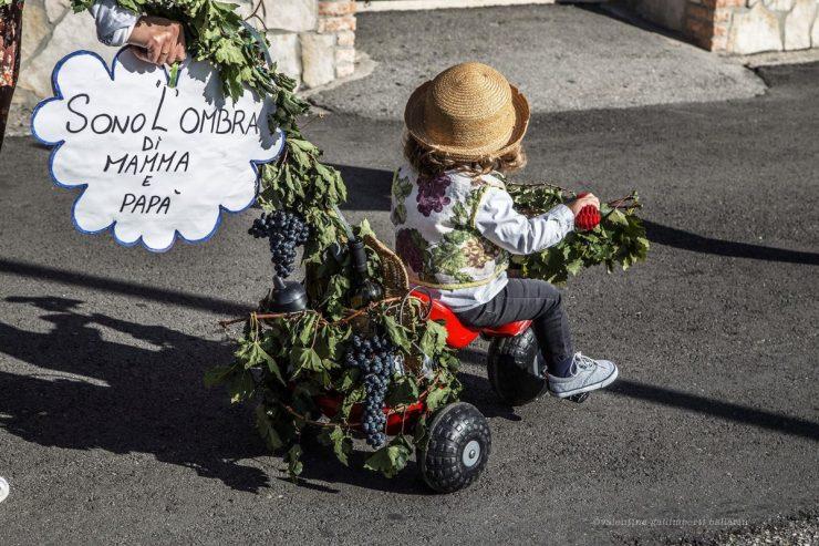Festa dell'Uva Vò, pic by Valentina Gallimberti Ballarin