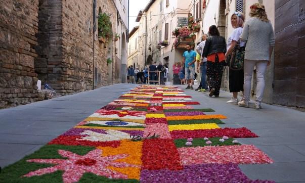I loved this carpet