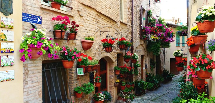what to do in Spello