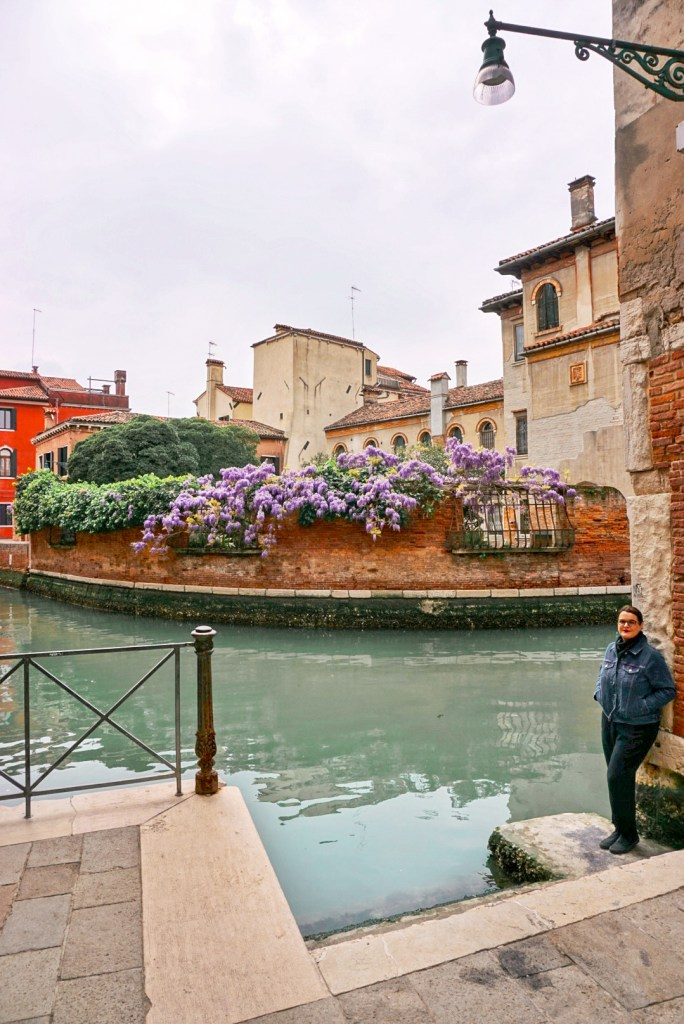 Wisteria in Venice, Ramo Arnaldi