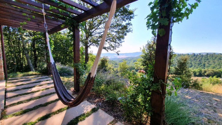 hammock with a view