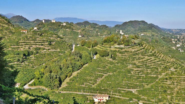 Sentiero delle Vedette, Lookout path,Prosecco road Itinerary