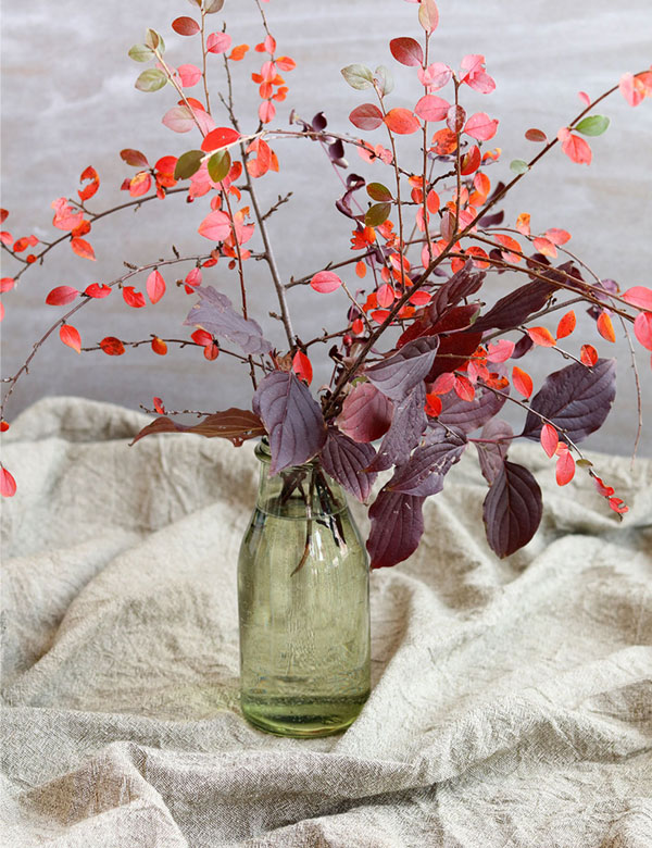 Happy autumn weekend : ) | My Cosy Retreat