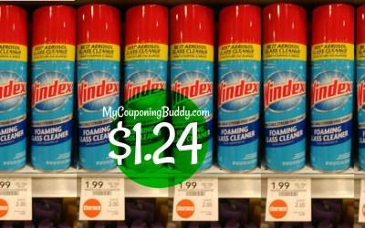 Windex Foam Cleaner $1.24 at Publix