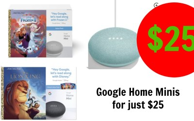 Google Home Mini Book Bundle $25